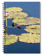 Floating On The Breath Spiral Notebook