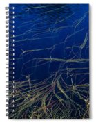 Floating Weeds In Picture Lake Spiral Notebook