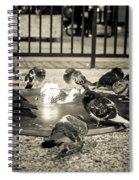 Flockin' Around The Fire Spiral Notebook