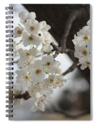 Flowering Tree Spiral Notebook