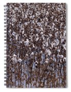 Flooded Cotton Fields Spiral Notebook