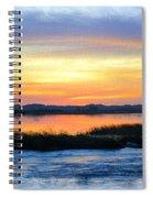 Flooded River Spiral Notebook