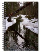 Flooding Forest Spiral Notebook