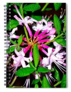 Flora In Pink Spiral Notebook