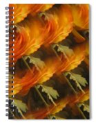 Floral Abstract 2 Spiral Notebook
