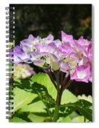 Floral Art Photography Pink Lavender Hydrangeas Spiral Notebook