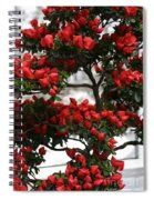 Floral Bonsai Spiral Notebook