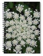 Floral Disc Spiral Notebook