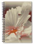 Floral Early Garden Light 11 Spiral Notebook