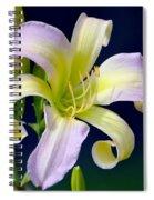 Floral Fanfare Spiral Notebook