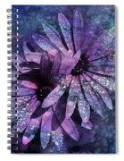 Floral Fiesta - S14c Spiral Notebook