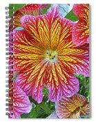 Floral Fireworks Spiral Notebook