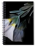 Floral Reflections 3 Spiral Notebook