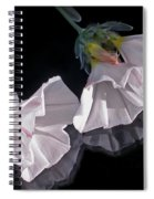 Floral Reflections Spiral Notebook