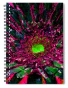 Floral Revolution 2 Spiral Notebook