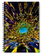Floral Revolution 3 Spiral Notebook