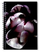 Floral Symmetry Spiral Notebook