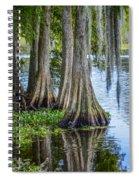 Florida Cypress Trees Spiral Notebook