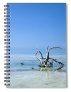 Florida Keys Lonely Root Spiral Notebook