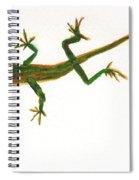 Florida Lizard Spiral Notebook