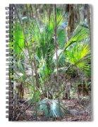 Florida Palmetto Bush Spiral Notebook
