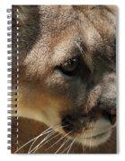 Florida Panther Spiral Notebook