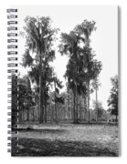 Florida Spanish Moss Spiral Notebook