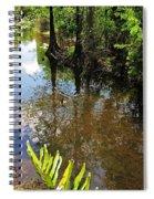 Florida Stream Spiral Notebook