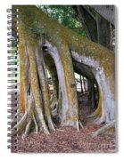 Florida Trees Spiral Notebook