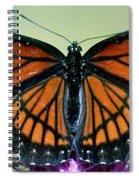 Florida Viceroy Spiral Notebook