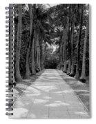 Florida Walkway Black And White Spiral Notebook