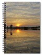 Florida Wetlands Spiral Notebook