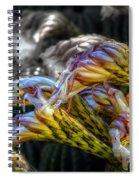 Flourish Spiral Notebook