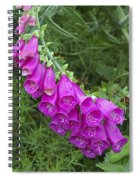 Flower 14 Spiral Notebook