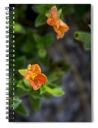 Flower 20 Spiral Notebook