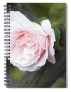 Flower Among The Fence Spiral Notebook