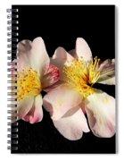 Flower Azalea. Spiral Notebook