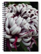 Flower Basket With Purple Texture Spiral Notebook