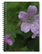 Flower Bath Spiral Notebook