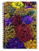 Flower Bed Across The Street From The Grand Palais Off Of Champs Elysees  Spiral Notebook