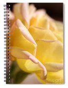 Flower-bright Yellow-rose With Pink Spiral Notebook