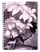 Flower Burst Original Spiral Notebook