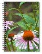 Flower - Cone Flower- Luther Fine Art Spiral Notebook