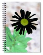 Flower - Daisy - Photopower 327 Spiral Notebook