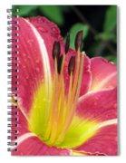 Flower Garden 02 Spiral Notebook