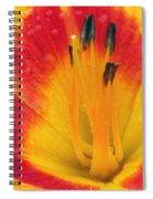 Flower Garden 03 Spiral Notebook