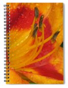 Flower Garden 10 Spiral Notebook