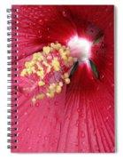 Flower Garden 17 Spiral Notebook