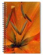 Flower Garden 24 Spiral Notebook