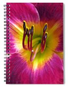 Flower Garden 30 Spiral Notebook